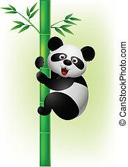 panda, kletternder baum