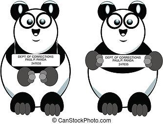 panda mug shot