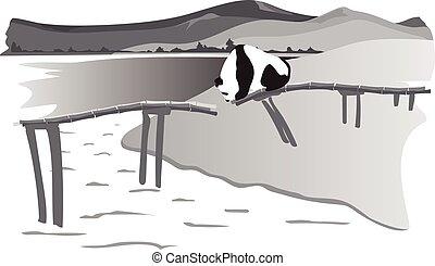 Panda on the destroyed bridge