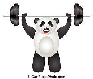 panda, peso