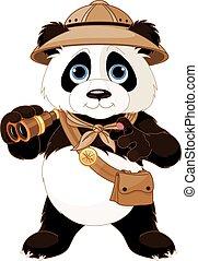 panda, safari, explorateur