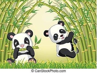 panda, sprytny, bambus, dwa, las