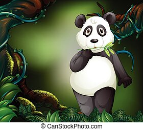 Panda standing in deep forest