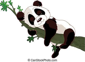 panda, sueño, en un rama