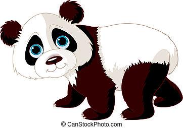 panda, vandrande