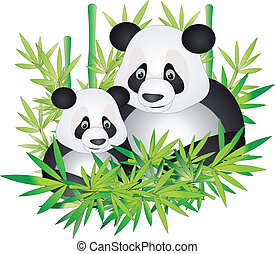 Bear panda and bamboo leaves isolated on a white