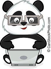 Panda with laptop