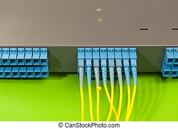 Panel of Fiber network switch
