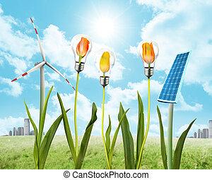 panel solar, y, energía eólica
