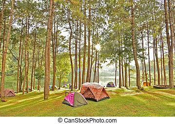 Pang Oung District Animal Area