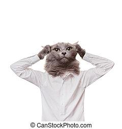 panicking businessman cat. collage