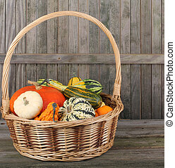 panier, courge