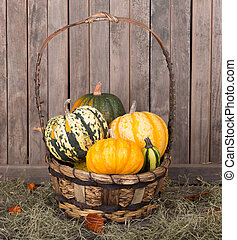 panier, courges
