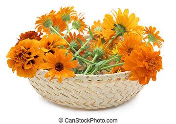 panier, fleurs oranges