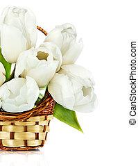 panier, isolé, tulipes, beau, blanc