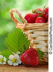 panier, table, fraises, jardin