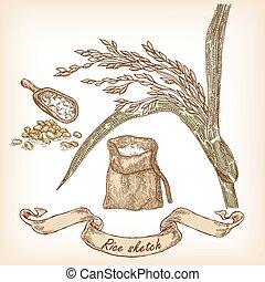 panificadora, sketch., mão, desenhado, ilustração, de, arroz, saco, e, grão