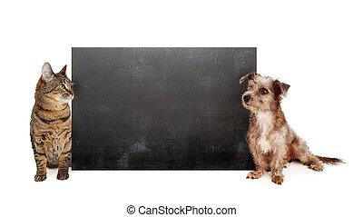panneau craie, poilu, chien, chat