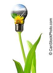 panneau, solaire, ampoule