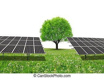 pannelli, prato, energia, albero, space., solare, copia