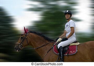 panning, caballo