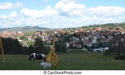 Panning over Zlatibor Village - Camera panning over village...