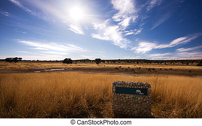 Pano landscape of watering hole in Kgalagadi