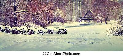 panoráma, közül, a, először, hóesés, a városban, park.