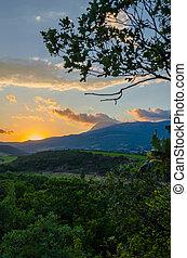 panoráma, közül, szőlőskert, képben látható, a, napnyugta