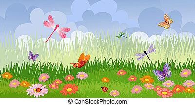 panoráma, virágos, pázsit
