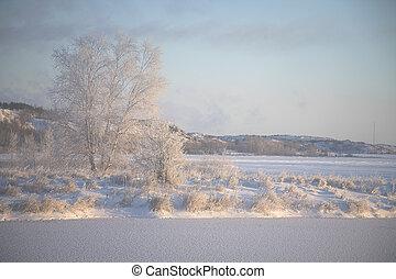 panorâmico, 2, inverno