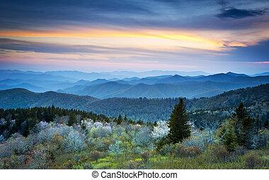 panorâmico, avenida cume azul, appalachians, montanhas esfumaçadas, primavera, paisagem, com, maio, flores