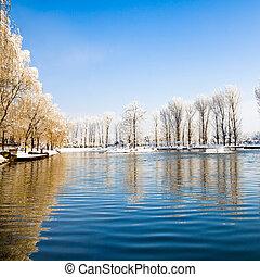 panorâmico, coberto, lago, inverno, neve, árvores.