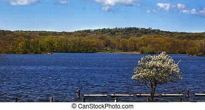 panorâmico, costa lago