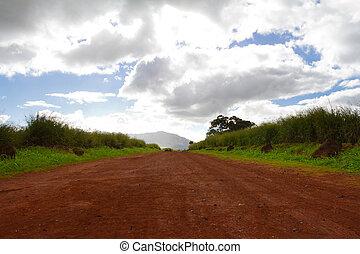 panorâmico, estrada longa, sujeira