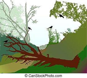 panorâmico, floresta, paisagem, com, árvore caída, estrada, e, silhuetas, de, pássaros