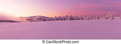 panorâmico, idyllic, paisagem inverno