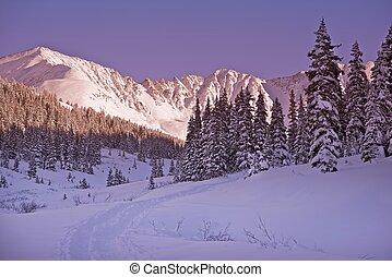 panorâmico, inverno, colorado