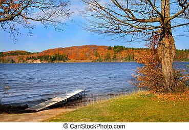 panorâmico, lago, durante, outono