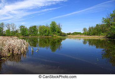 panorâmico, lago, em, michigan