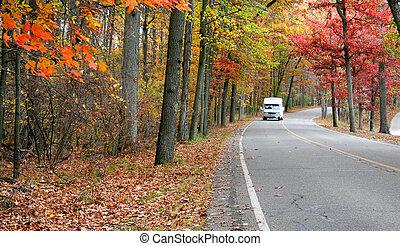 panorâmico, outono, conduzir