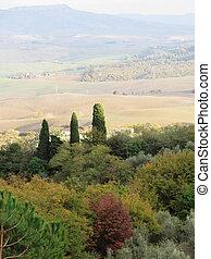 panorâmico, típico, tuscany, paisagem, vista