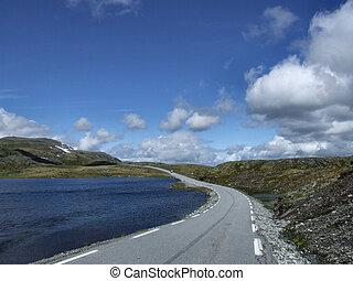panorâmico, verão, estrada, em, noruega