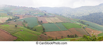 panorama agricultural lands in the mountains