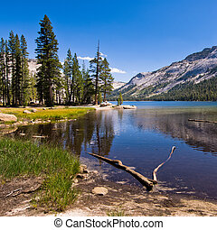lake tenaya in yosemite national park