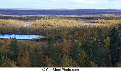 Panorama autumn Northern boreal forests - Autumn in the...