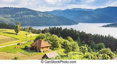 panorama, av, a, litet, hus, på, den, den, kust, av, insjö, bicaz