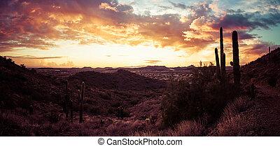 panorama, az, ondergaande zon , woestijn, feniks