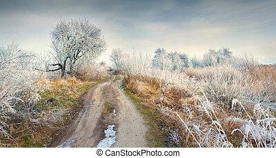 panorama, bosque, helado, mañana