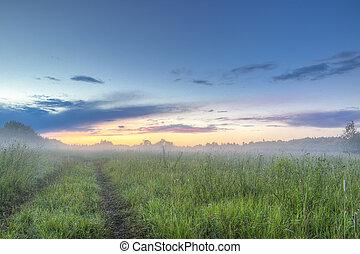 panorama, cielo, mattina, campo, nebbia, alba, strada